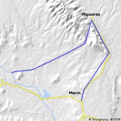 Marin-Higueras-Zuazua
