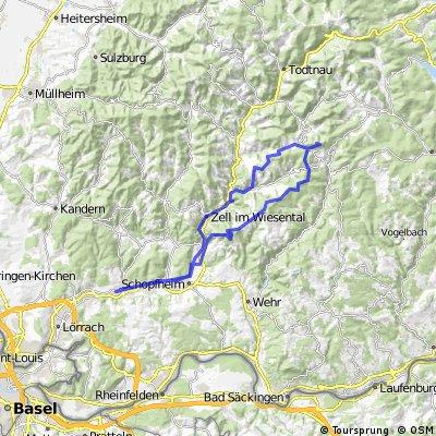 SBF Tages-Tour: Steinen - Hochkopf
