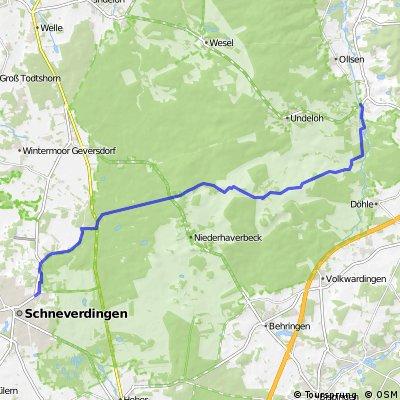Sahrendorf - Grüne Aue - Wilseder Berg - Einem - Schneverdingen 22 km