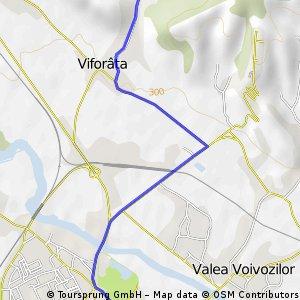 Targoviste-Viforata