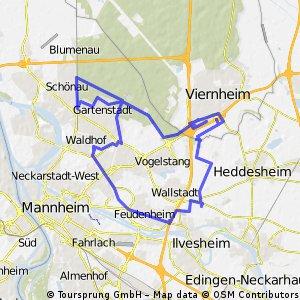 roadtrip durch mannheim