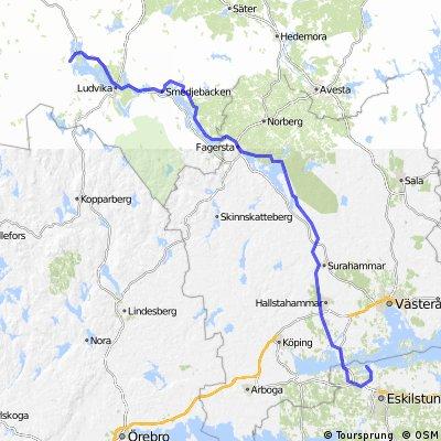 Vikings Giro 12