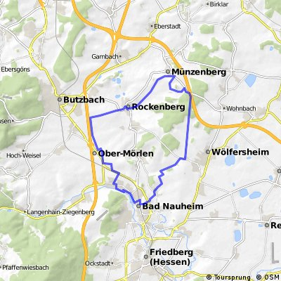 Münzenburg