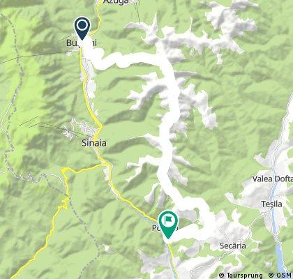 Bușteni-Munții Baiului-Posada