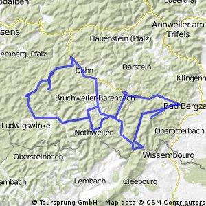 2013 Südpfalz