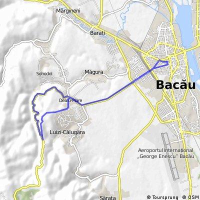 BACAU-DEALU MARE