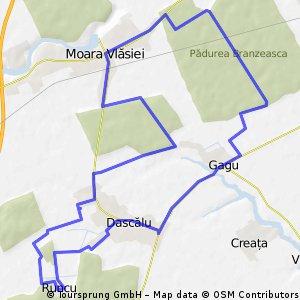 Dascalu - Runcu - Moara Vlasiei - Gagu