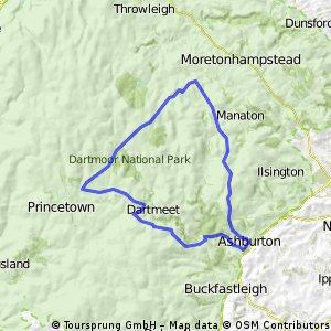 Princeton loop