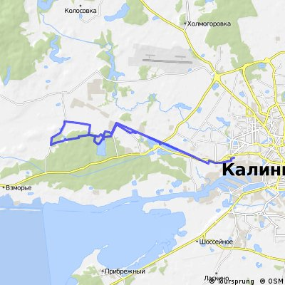 2013-12-15 (силикатный карьер и лес за Космодемьянским)