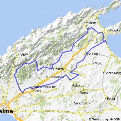 Alcudia - Coll de Honor II - Alcudia