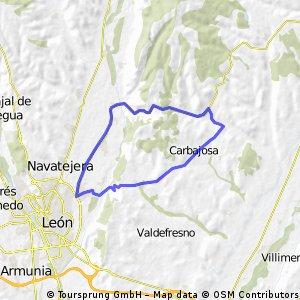 Villafeliz-Leon