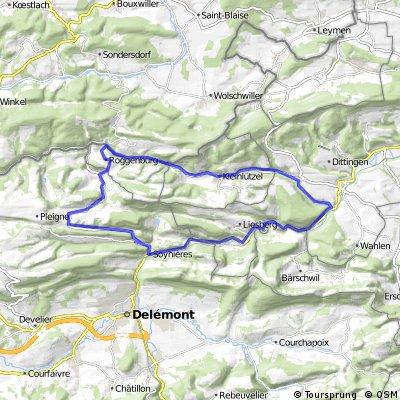 Runde Laufen, Kleinlützel Roggenburg Soyhieres Laufen