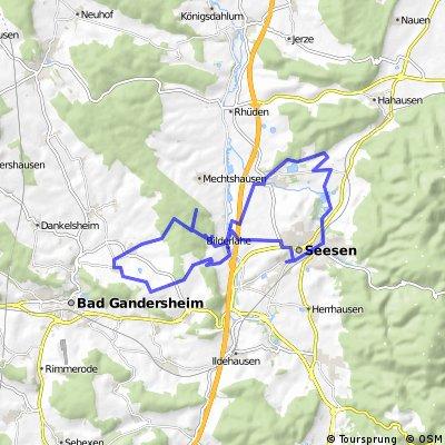 Seesen-Ruine Wohlenstein-Wolperode-Seesen