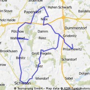 Prisannewitz-Papendorf-Schwan