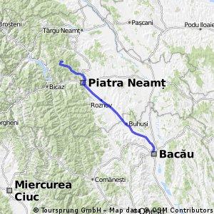 BACAU-LACUL CUIEJDEL-BACAU