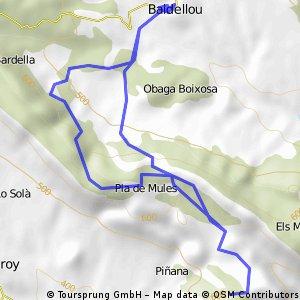 ruta baldellou CAFEM
