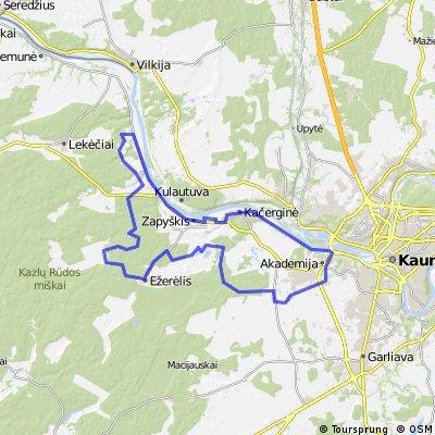 Vidutinio sunkumo: Kačerginė-Jadagonys-Ežerėlis-Ringaudai