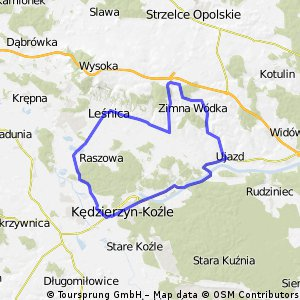 Pętelka Kędzierzyn-Koźle