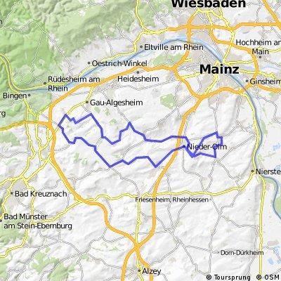 Aspisheim