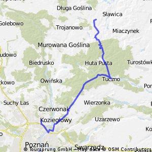 Lopuchowo PKP przez Zielonkę i Tuczno do Poznania