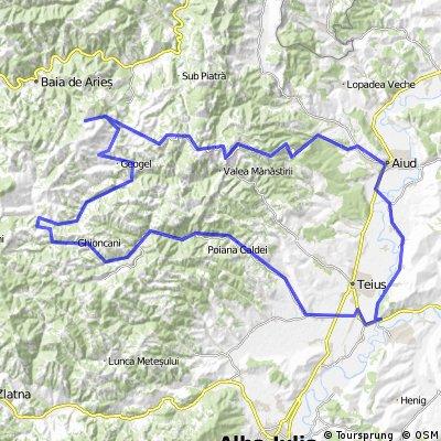 Aiud - Rimet - Manastirea Ponor - Geogel(Valea Bucurului) - Intregalde - Capud - Radesti - Aiud