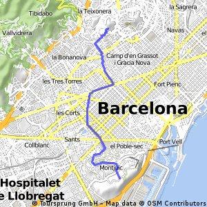 Cap a la Torre de Montjuïc i al Jardí Botànic
