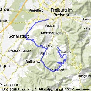 FR - Schönberg - Geiersnest