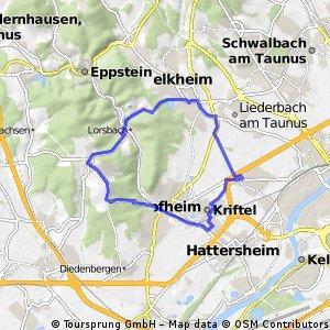 Zeilsheim - Gundelhart - Langenhain - Kriftel