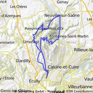 Mont d'or (2 montée)