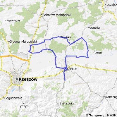 Albigowa-Lańcut-Czarna-Jasionka-Rakszawa-Żołynia-Łańcut-Albigowa