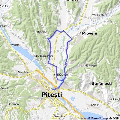 Pitesti-ValeaMare-Maracineni-Argeselu-Micesti-Mioveni-Pitesti