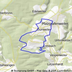 Lützenhardter Wald