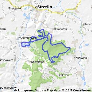 17. Trasa Mini IX Maratonu rowerowego - Wzgórza Strzelińskie MTB