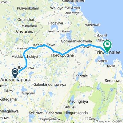 2. Anuradhapura - Trinkomalee