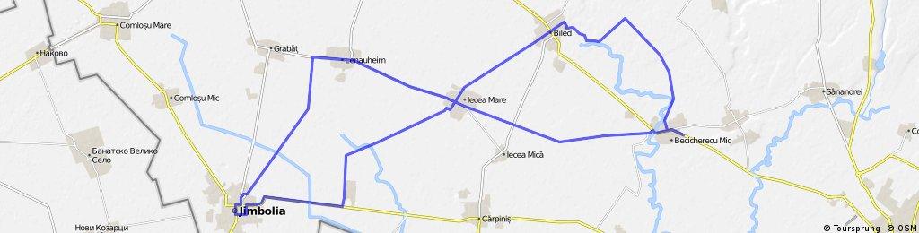 Loop 26 Becicherecu Mic