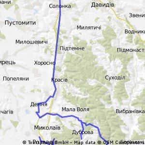 Миколаївський район