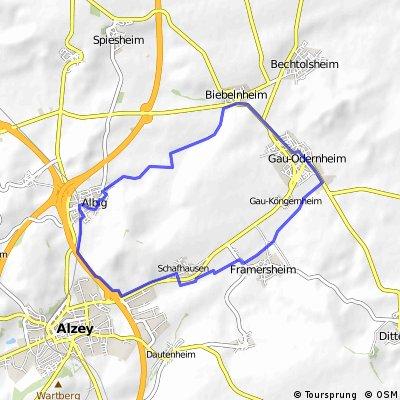 Feierabend-Rundfahrt (Gau-Odernheim-Alzey-Albig)