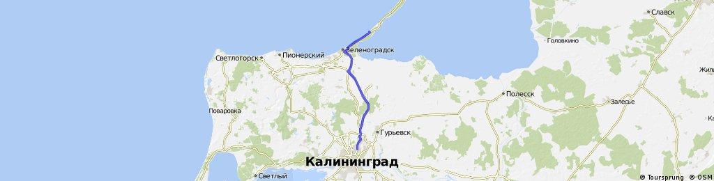 Утренняя пробежка до 7 км Куршской косы