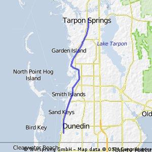 Tarpon To Dunedin