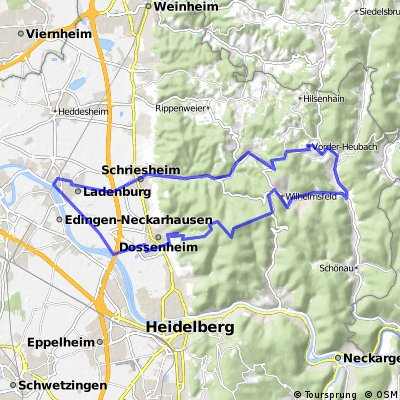 Rundtour Odenwald (Weißer Stein, HKS, Altenbach)