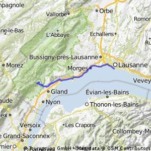 Le Muids - Lausanne