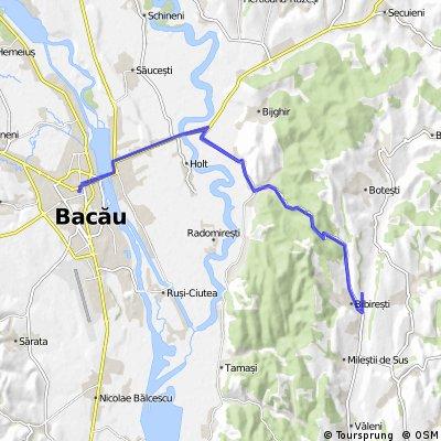 BACAU-LACUL BIBIRESTI