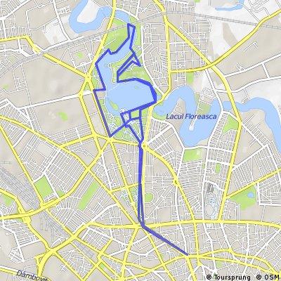 Cu bicicleta prin Bucuresti - traseul 18: Romana - Aviatorilor - Parc Herastrau, pe roti mici, fara Roata Mare