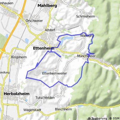 Ettenheimer Panorama-Tour Nr. 8