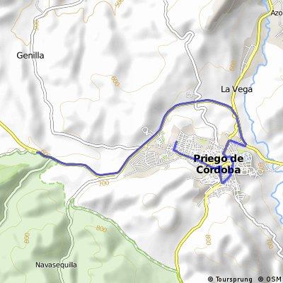 5ª Etapa Priego de Córdoba, Neutralizado 9 km