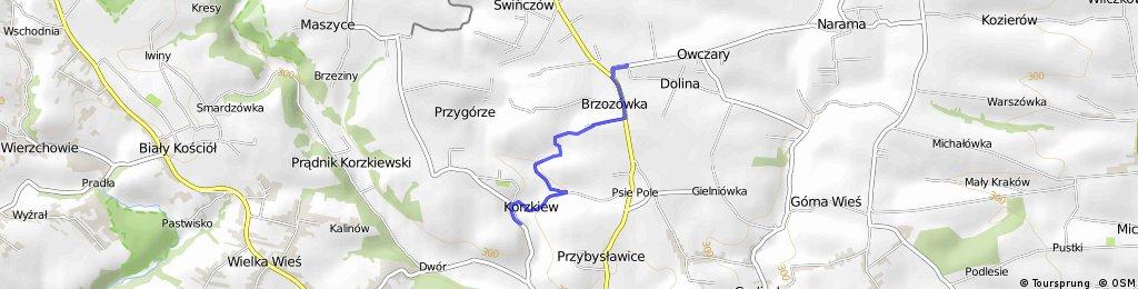Korzkiew-Brzozówka-Owczary