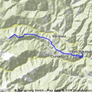PLAN: Valea Macesului-Strategica-Cabana Pliul Poienii si retur - PLAN