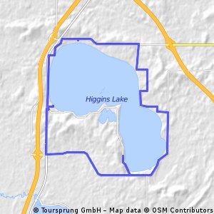 Higgins Lake
