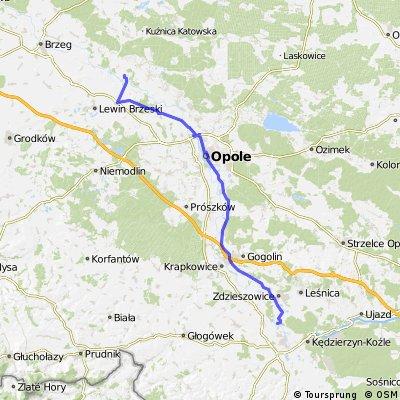 Januszkowice-Popielow