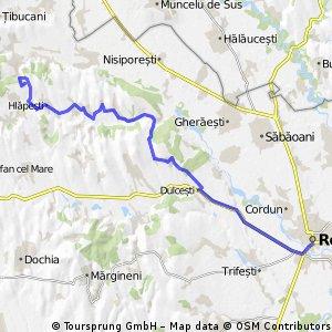 Roman - Valea Mare